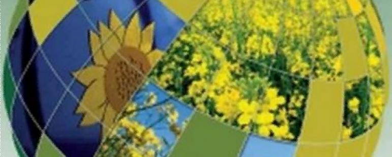 Παράγοντες που επηρεάζουν την αγορά βιολογικών προϊόντων