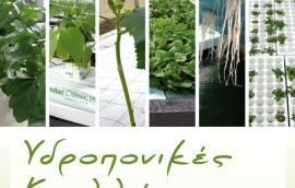 Υδροπονικές καλλιέργειες: ανοιχτά και κλειστά συστήματα