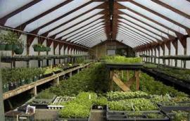 Προϋποθέσεις  εξάπλωσης της βιολογικής γεωργίας