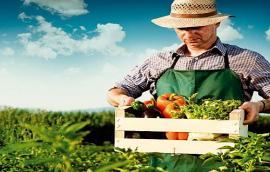Αγροτικό Marketing