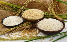 Βιολογικό ρύζι