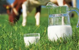 Βιολογικό αγελαδινό γάλα