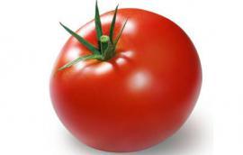 Βιολογική ντομάτα